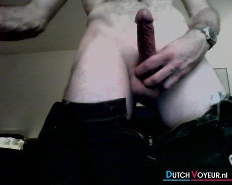 stiff cock