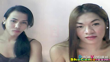 Two pretty shemale show their hot bodies